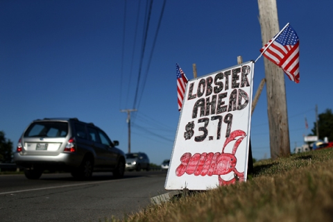 Cheap Lobsters for Sale