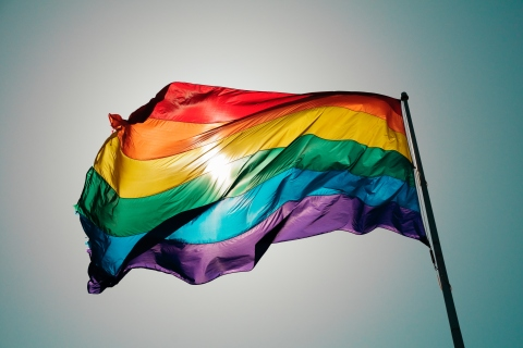 Gay pride flag.